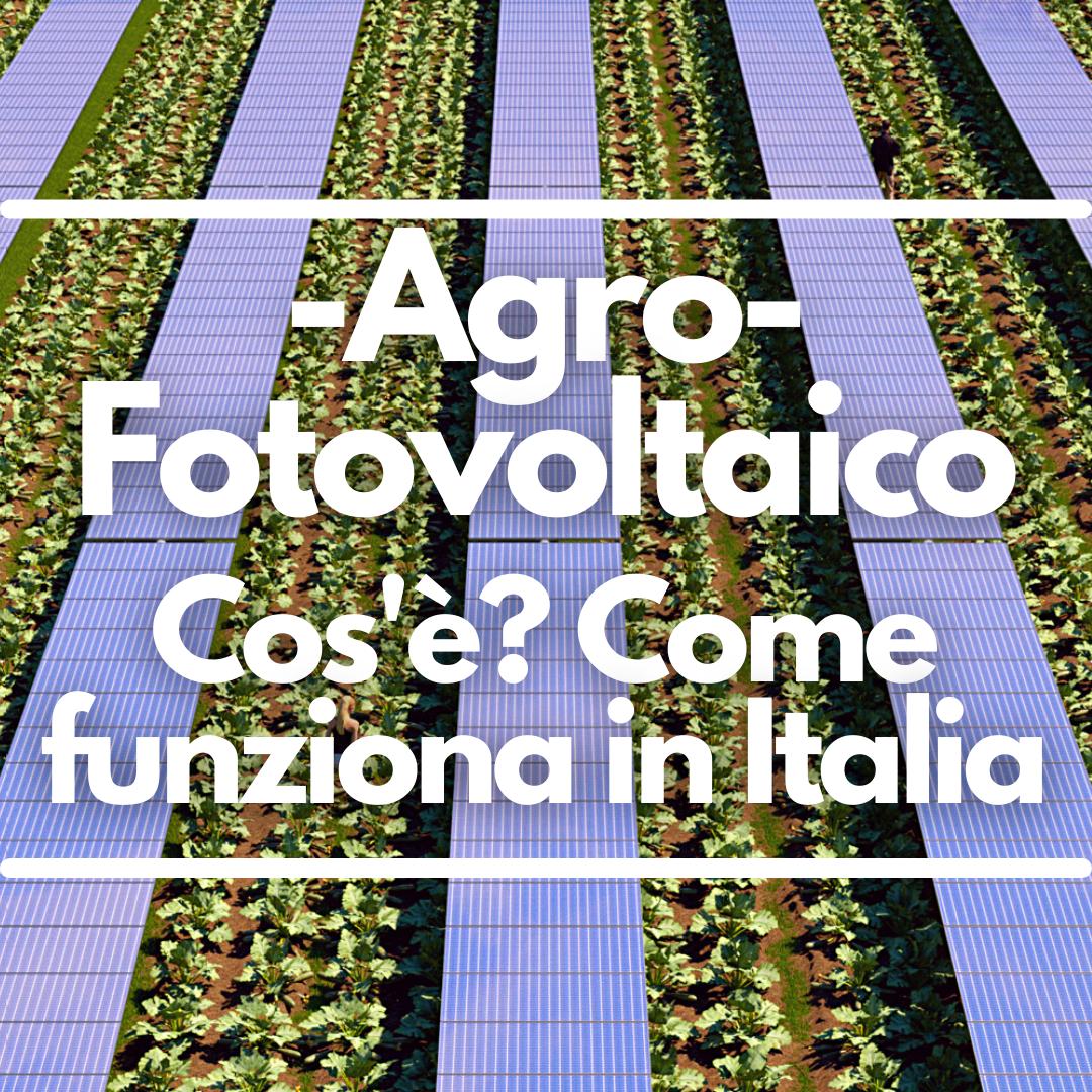 Agrofotovoltaico